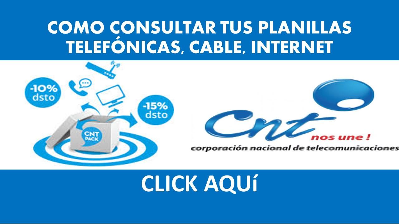 Consultar Planilla CNT - Valor a Pagar CNT