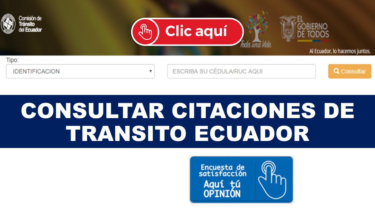 Consultar Citaciones de Transito Ecuador
