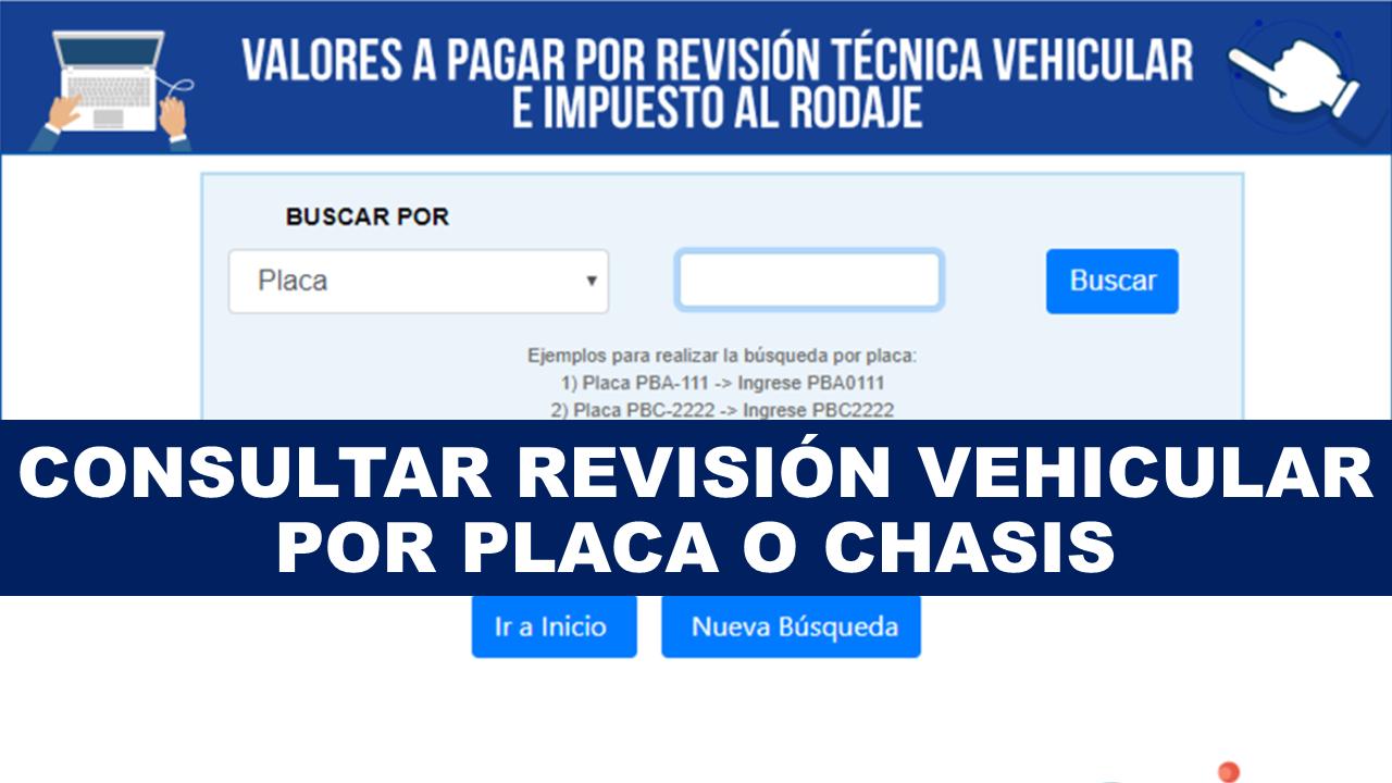 Consultar revisión vehicular por placa o chasis