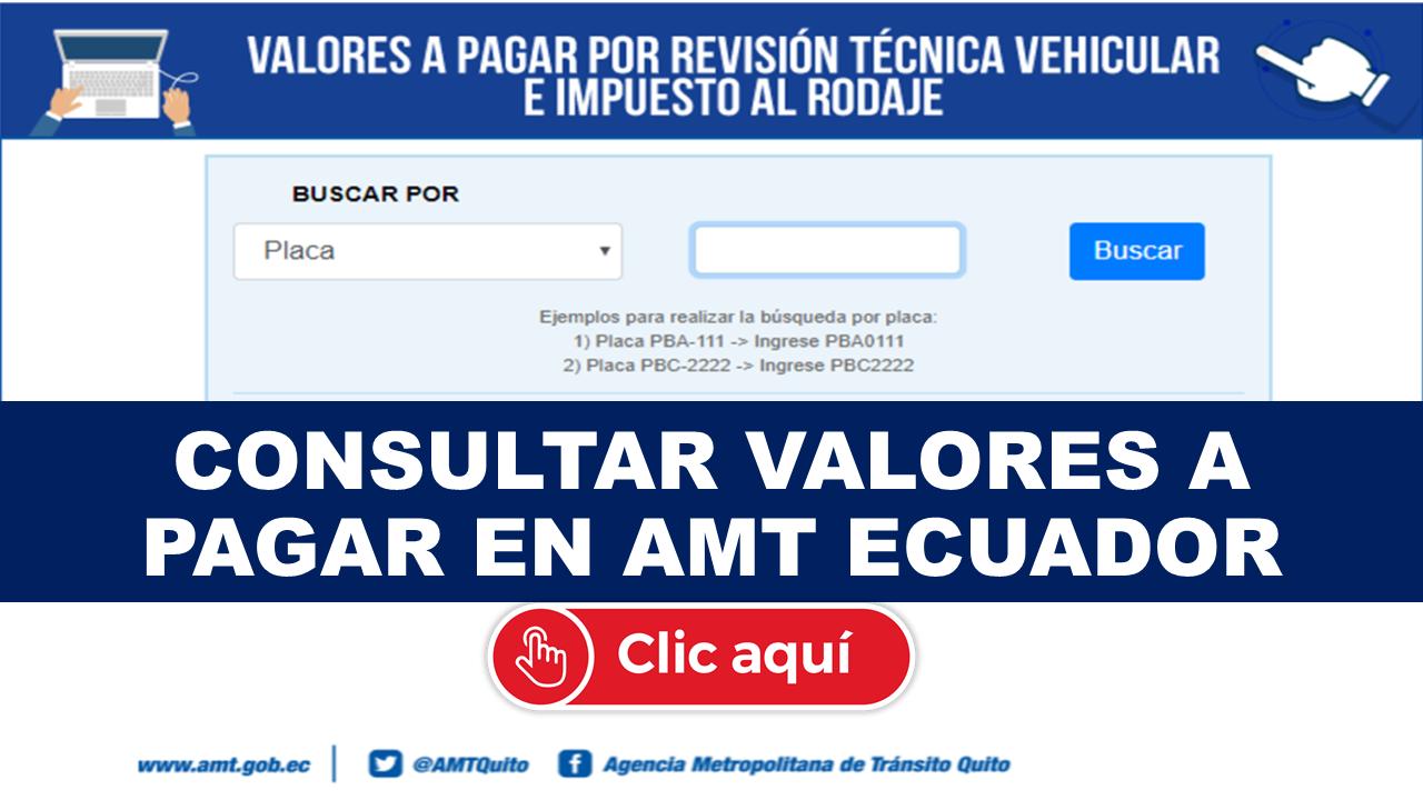Consultar Valores a Pagar en AMT Ecuador
