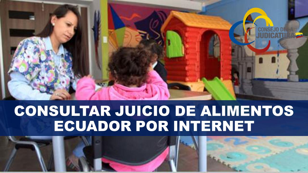 Consultar juicio de alimentos Ecuador por internet