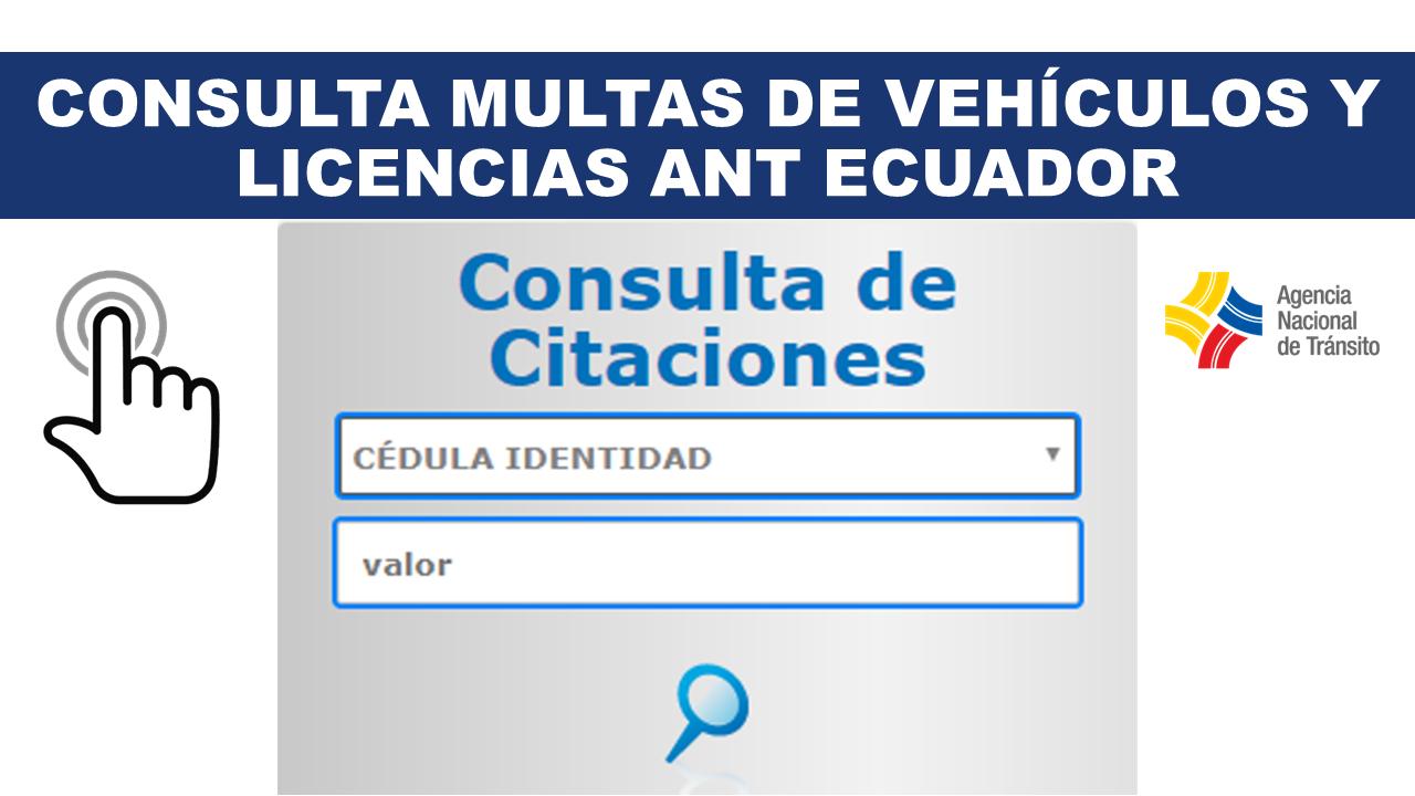Consulta Multas de Vehículos y Licencias ANT Ecuador