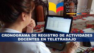 Registro de Actividades Docentes en Teletrabajo Cronograma