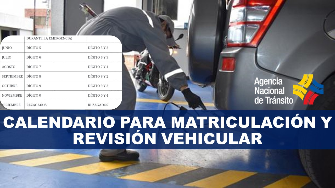 Calendario para matriculación y revisión vehicular