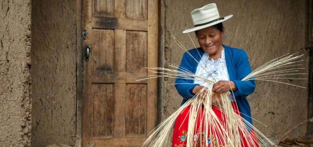 créditos para el campo que instituciones que atienden la demanda de servicios financieros principalmente en zonas rurales crédito rural préstamos agropecuarios tipos de créditos rurales créditos agrícolas financiamiento y su importancia para el desarrollo rural créditos para el campo